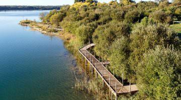 Le sentier découverte de la réserve naturelle d'Arjuzanx