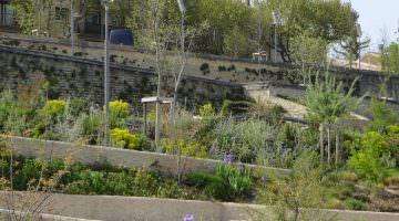 La coulée verte à Carpentras : le jardin stratigraphique