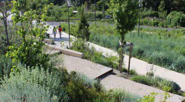 La coulée verte : vue du jardin stratigraphique