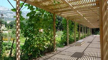 Baudouvin : les jardins potagers