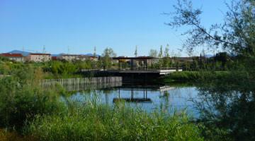 L'étang du parc Sant Vicens