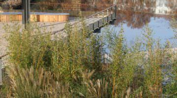 esplanade, et l'étang parc Sant Vicens