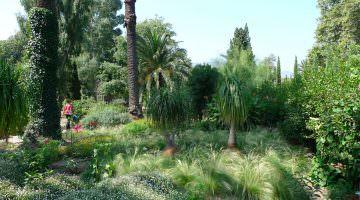 Le jardin du directeur à Paulilles