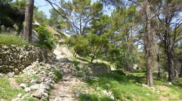 Le site archeologique de Saint-Blaise : le sentier