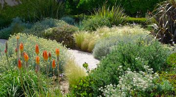 le jardin de la villa des Tours à cassis